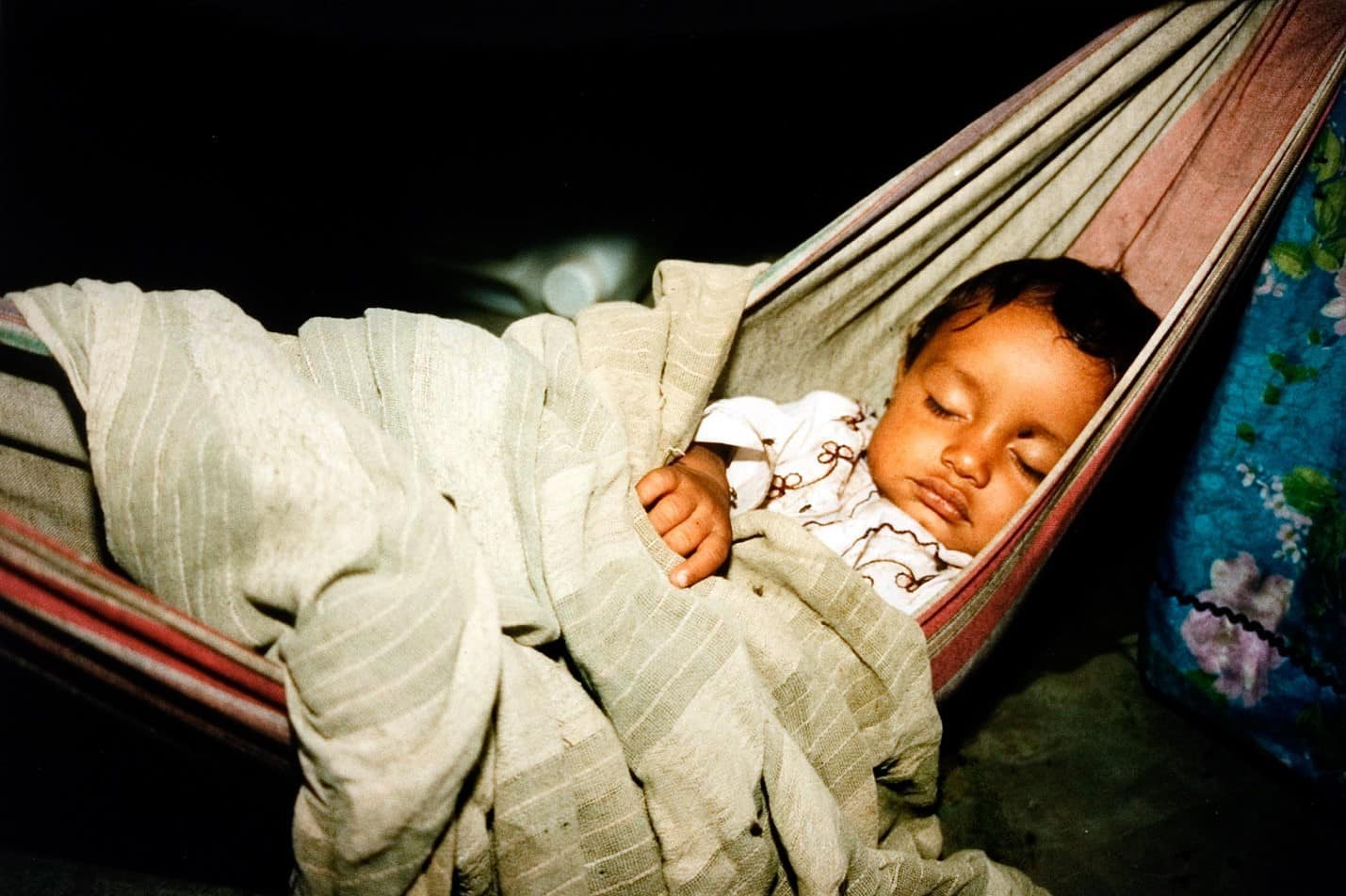 daily mom parent portal are baby hammocks safe for babies 2 1